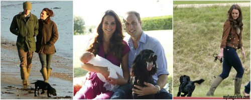 Will and Kate + Lupo