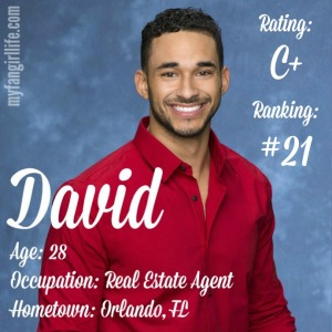 The Bachelorette David (W0)
